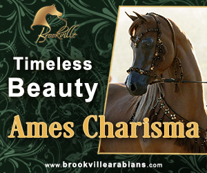 2017oct brookville arabians small web banner 300x250 Ames Charisma